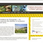 5 - site web miellerie